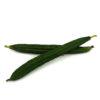 Organic Petola / Luffa