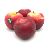Organic Dazzle Apple