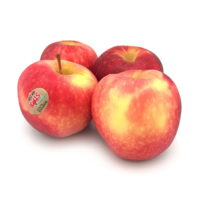 Organic Premier Star Apple